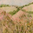 Poppy hedgerow