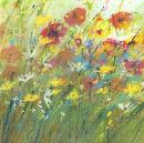 Summer-poppies