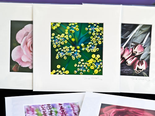 Small square mounted prints