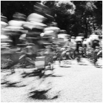 Cyclists Returning Monochrome