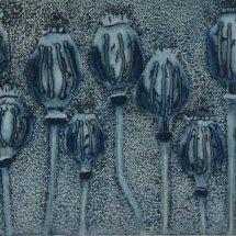 Poppy Seedheads II