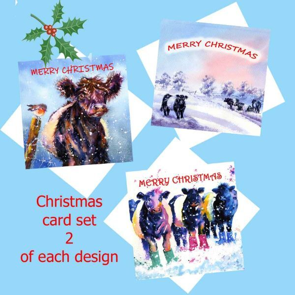 beltie-christmas-card-set