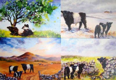 Beltie card pack