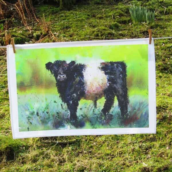 Belted Galloway tea towel with painting of dad by susan metcalfe art