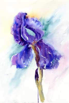"iris <font color=""red"">SOLD</font>"