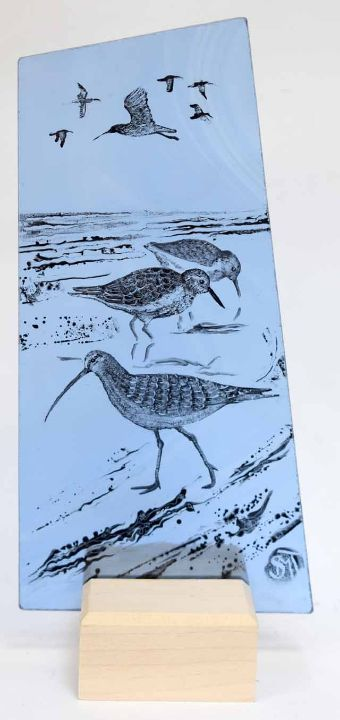 Curlew and Turnstones Blue