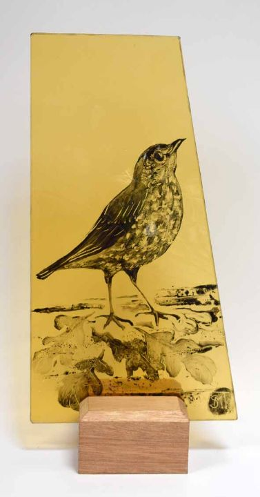 Thrush on yellow