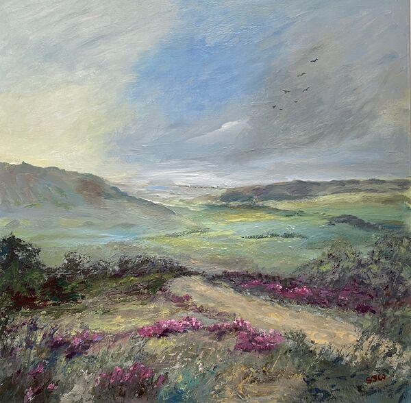 hillside footpath heather landscape view