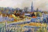 autumn saffron  walden allotments