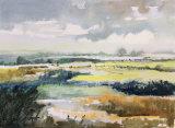 damp day N. Norfolk