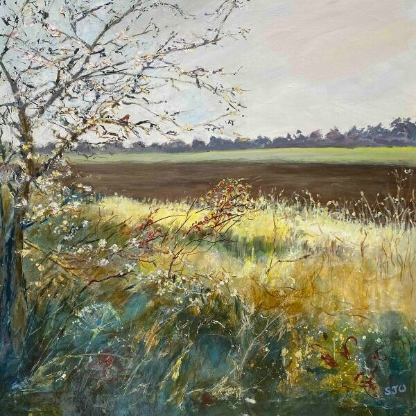field edge autumn
