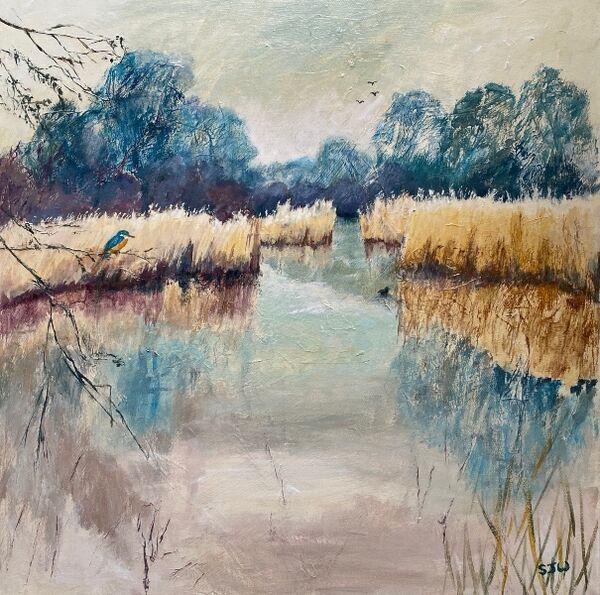 kingfisher reeds wicken fen