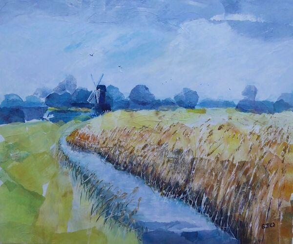 wicken fen windmill reeds