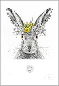 Hare Queen print example