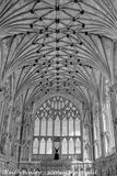 #134 The Ceiling of the Lady Chapel Ely Cathedral - Mono Study