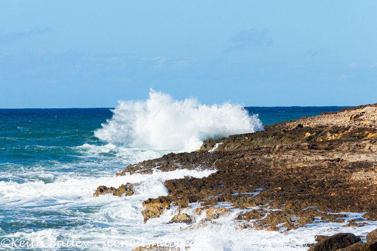 #139 San Jordi Seas