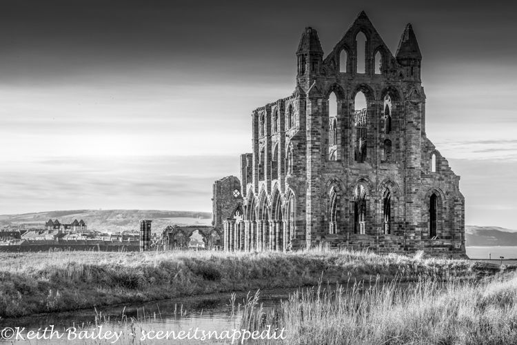#14 Whitby Abbey Yorkshire ( Mono Study)