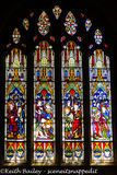 #69 Ely Cathedral Stained Glass