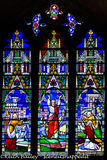 #76 Ely Cathedral Stained Glass