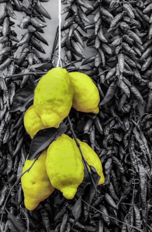 A Dash Of Lemon