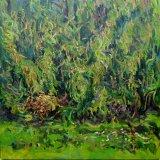 Autumn Pine II, 90 x 90cm