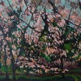 Spring Bloom, 80 x 120cm