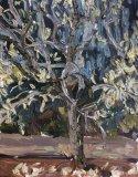 Magnolia sketch