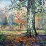 New Forest Plein Air Oil 40 x 40cm ws NFS
