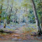 Quiet Woodland, Pastel ws
