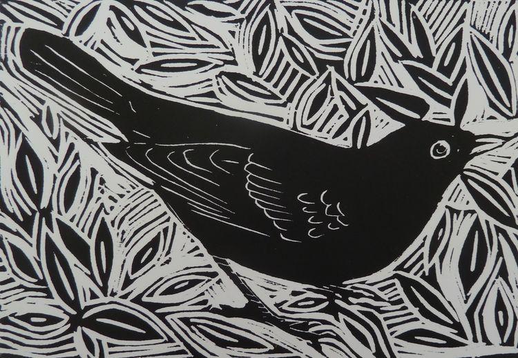 Blackbird woodcut