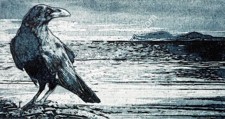 Raven, Hoy Sound