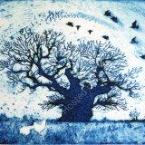 The Bowthorpe Oak