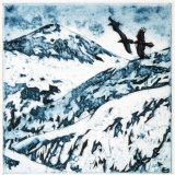 Ravens over Beinn Mhealaich