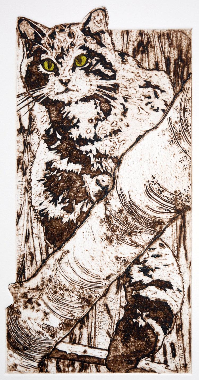 The wood-cat