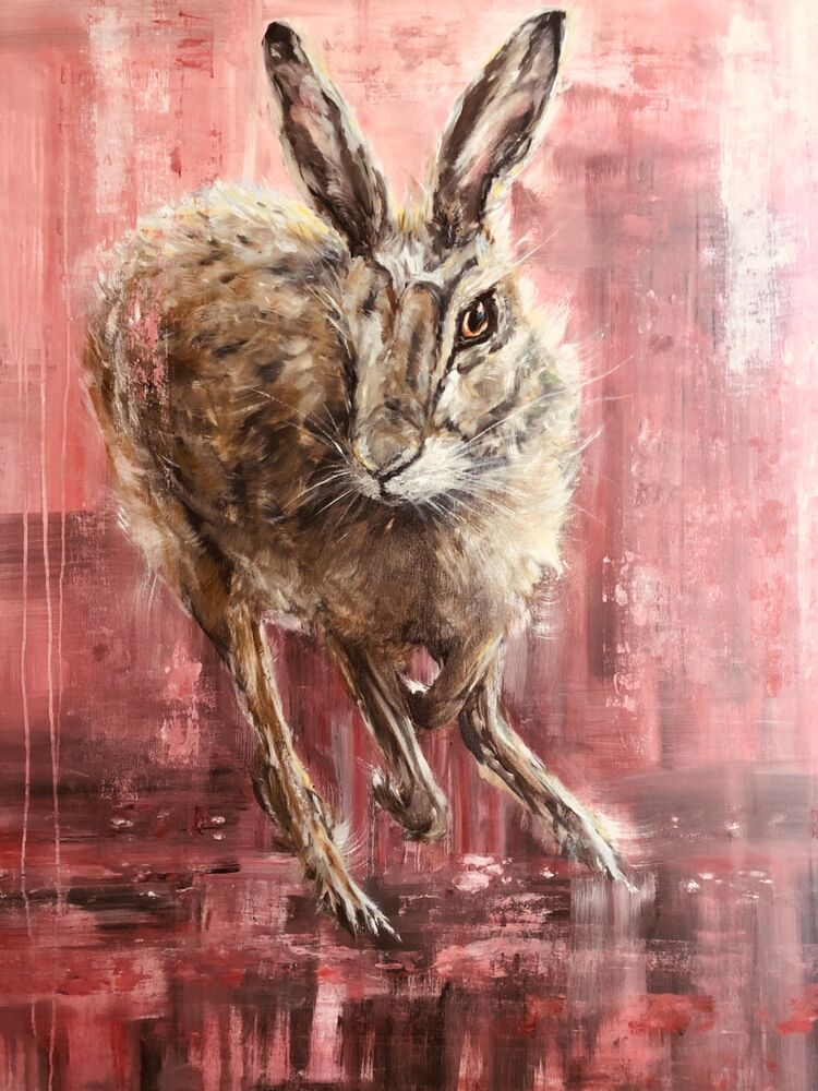 Mad Pink Hare