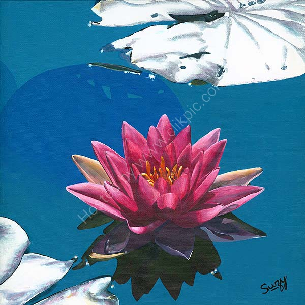 Floating Water Lily