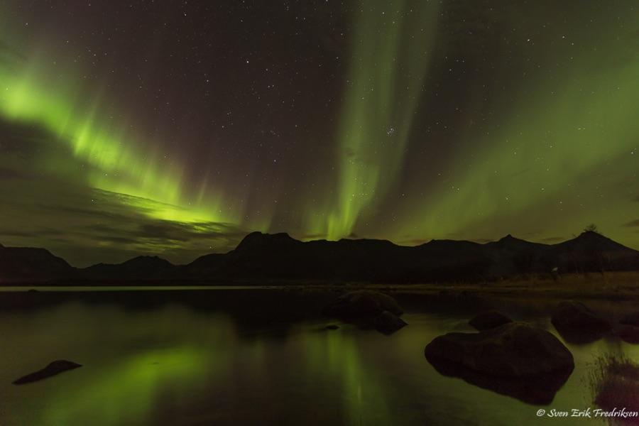 Aurora borealis in Forfjord