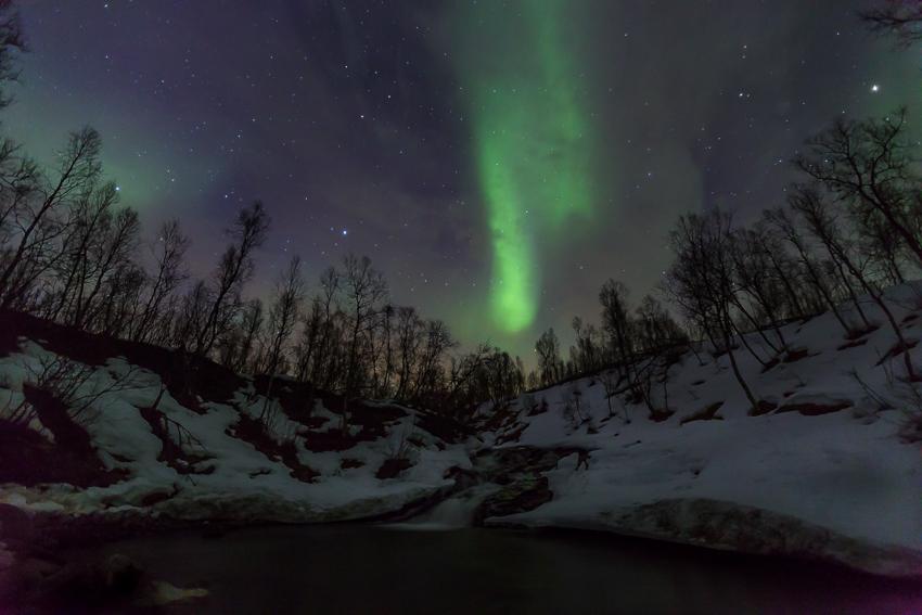 Aurora borealis and Kobbedalselva