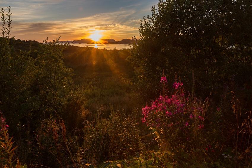 Sunset Børøya