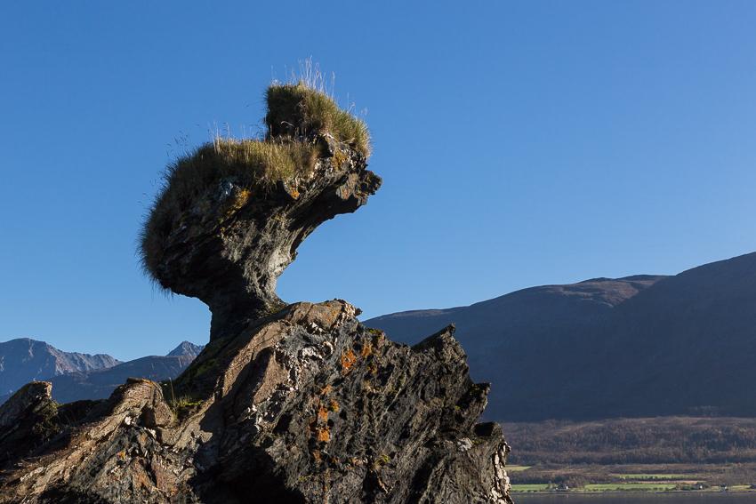 Troll rock