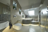 Guest bathroom  2015