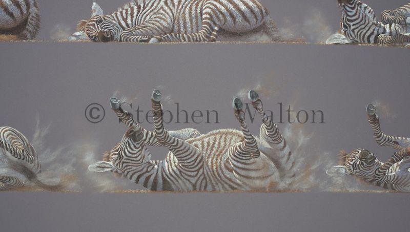 Grid Of Nine No.1 Young Zebra - detail
