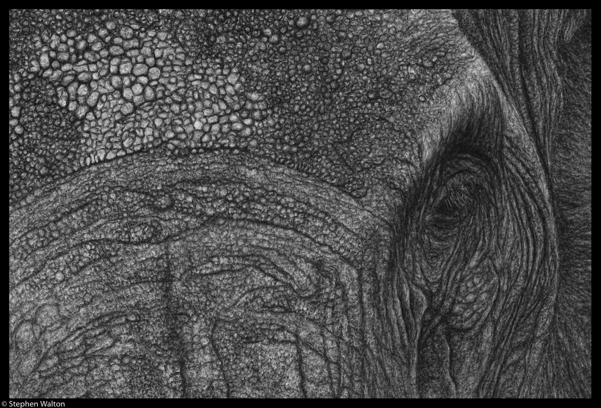 Procession - detail
