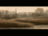 Winter afternoon at Fen Drayton