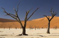 Deadvlei Dunes