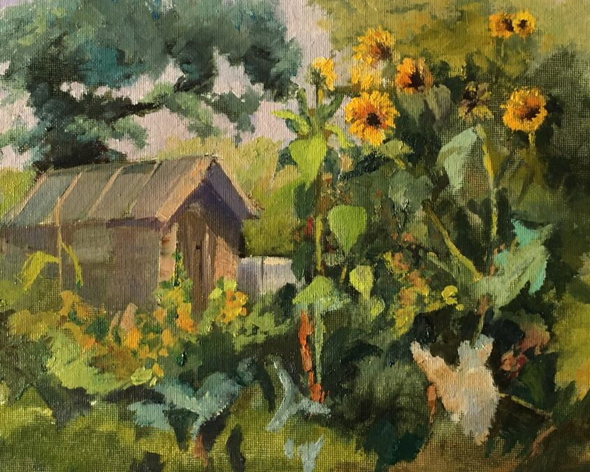 Sunflowers and Shed