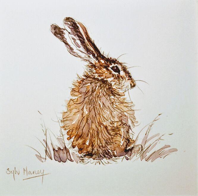 Hare in watercolour