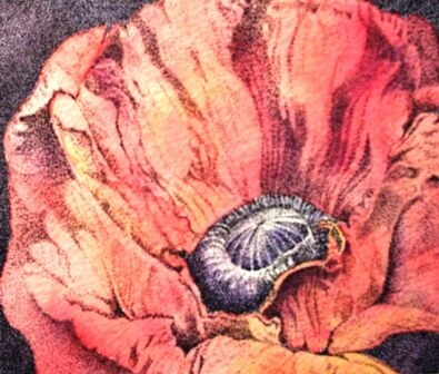 Poppy in watercolour and ink