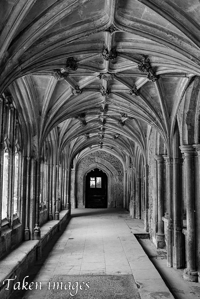 Cloisters #2