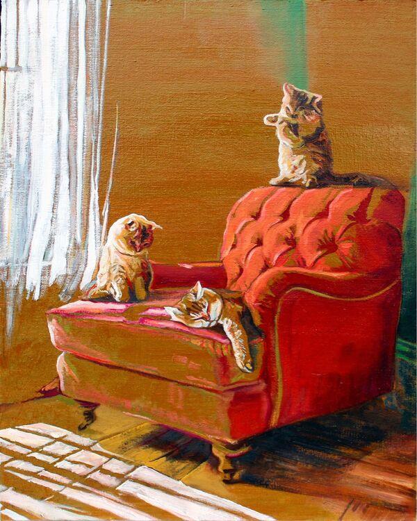Sunlight lounge kitties